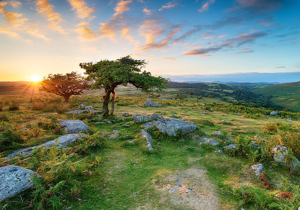 Reise in den Dartmoor National Park UK
